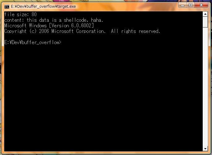 20100704_overflow2.jpg